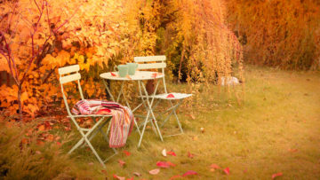 table and chairs in an autumn garden