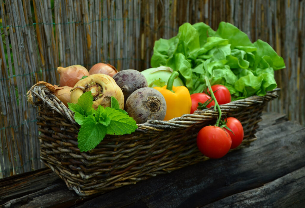 bountiful harvest of fruit, vegetables and herbs