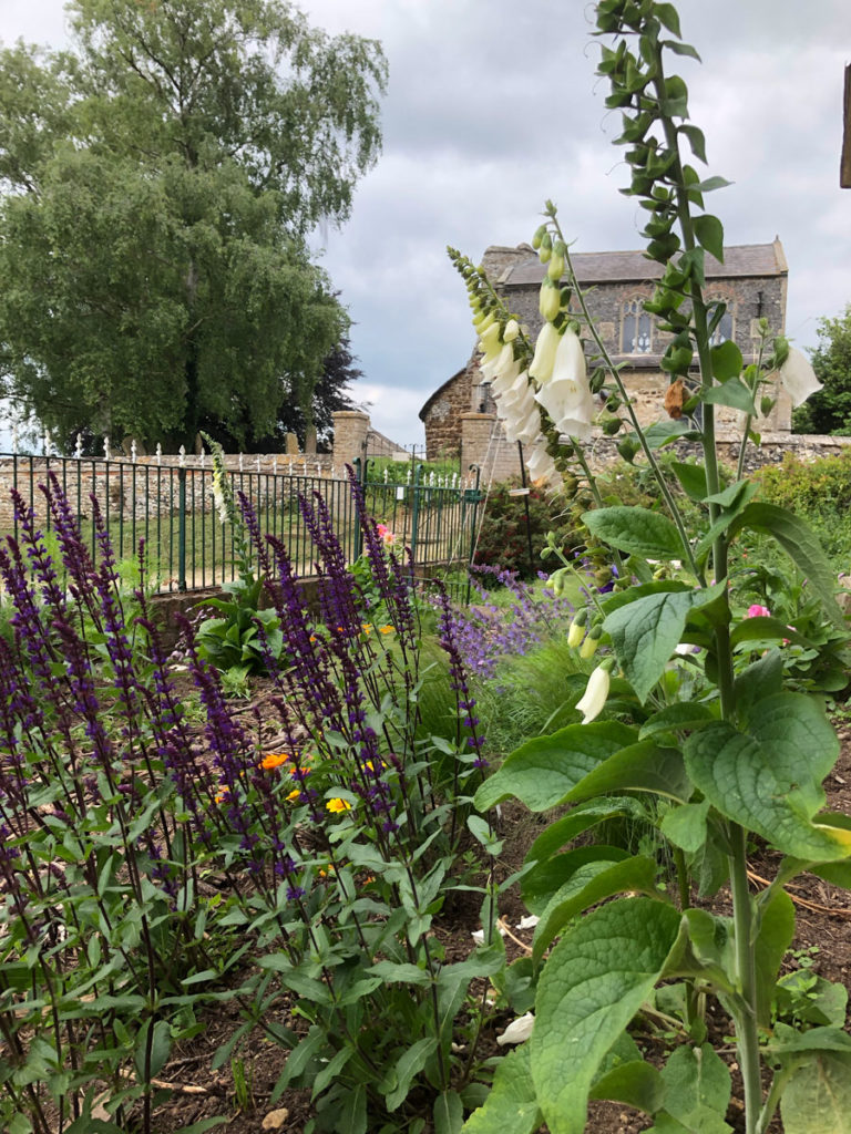 cottage garden with round tower church in the background